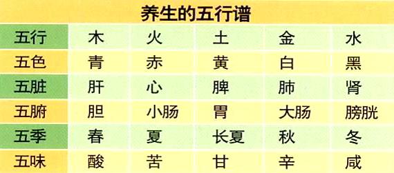 中医五行与四季摄生