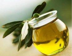 橄榄油功效好护肤作用大