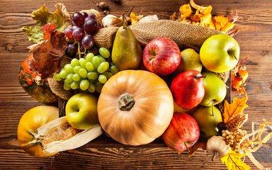 秋季养生---营养原则