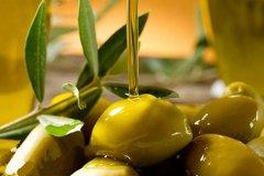 橄榄油是不是转基因?