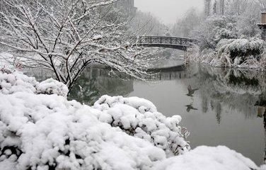 冬季易患病 严防莫放松