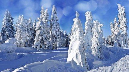 寒冬多风湿 预防重细节