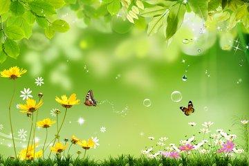 春光明媚踏青去,注意防虫防过敏