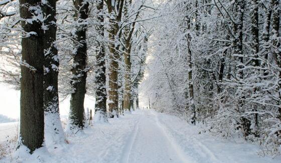 冬季养生需要注意哪些?